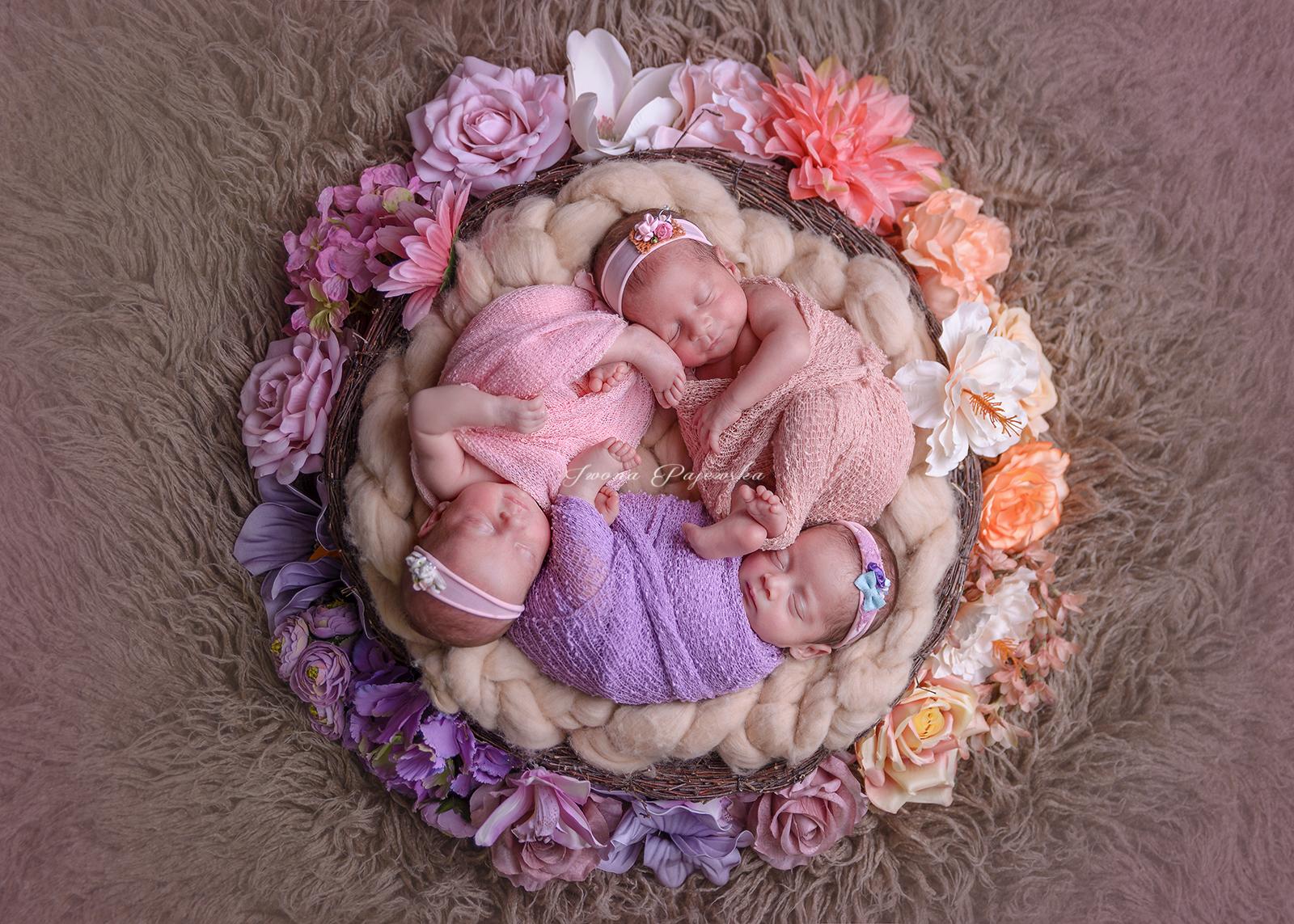 net sesja noworodkowa trojaczki (7)